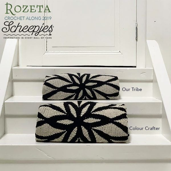 Rozeta Midnight